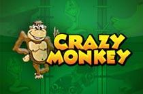 Игра Слот Crazy Monkey