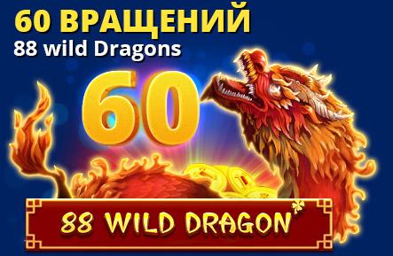 60 вращений 88 Wild Dragons